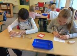 Mathematikunterricht in der 3a